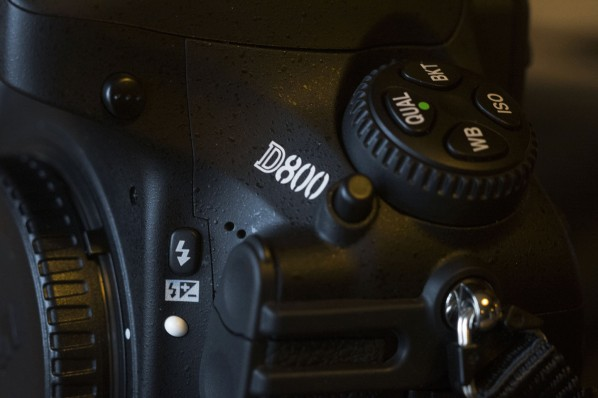 D800 Investment